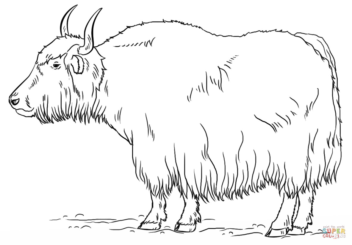 Yak clipart black and white. Png transparent images click