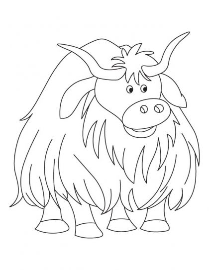 Yak clipart colouring page. The large and voluminous