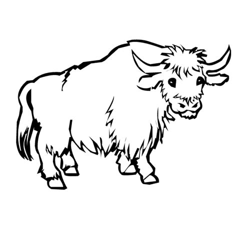 Yak clipart colouring page. Collection of free pages