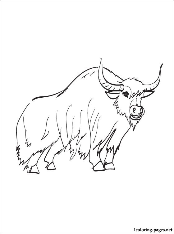 Yak clipart colouring page. Coloring pages getcoloringpages com