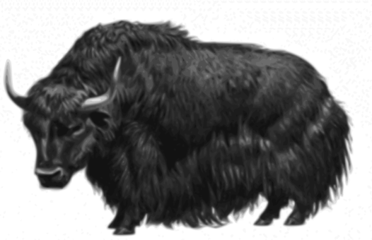 Yak clipart trainer. Students for a free