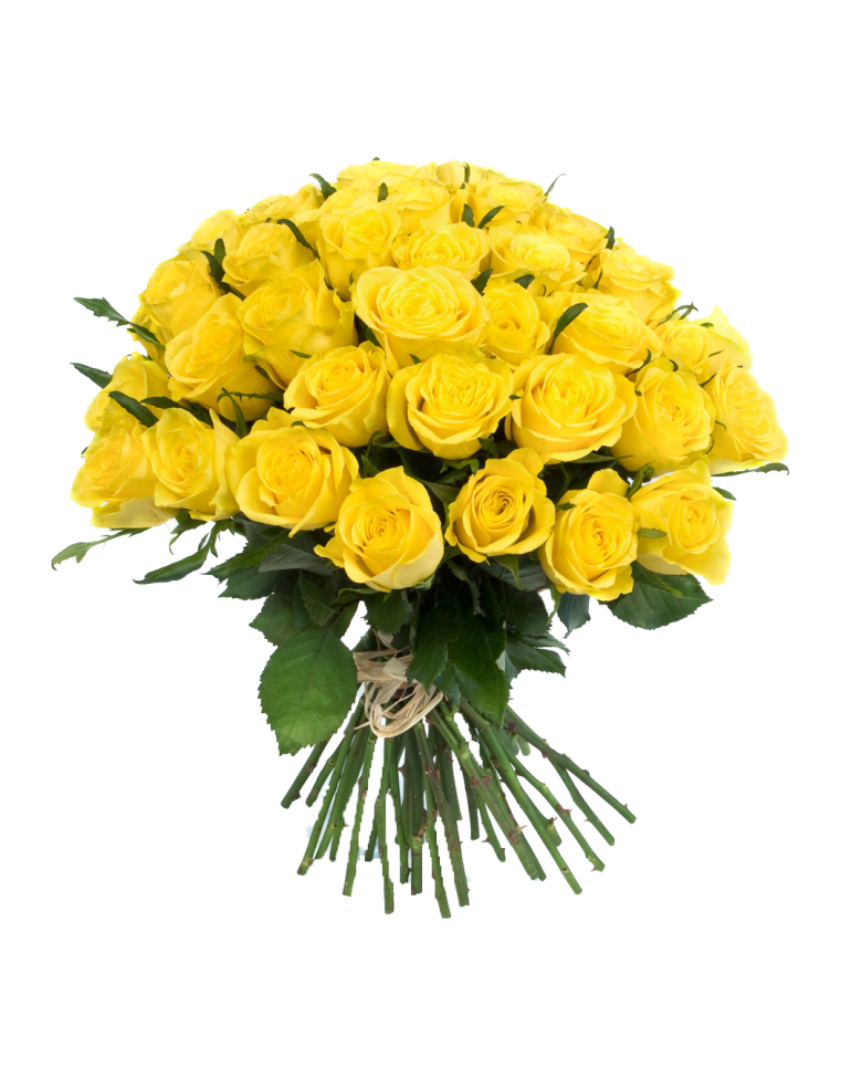 Bouquet of yellow roses png. Images transparent free download