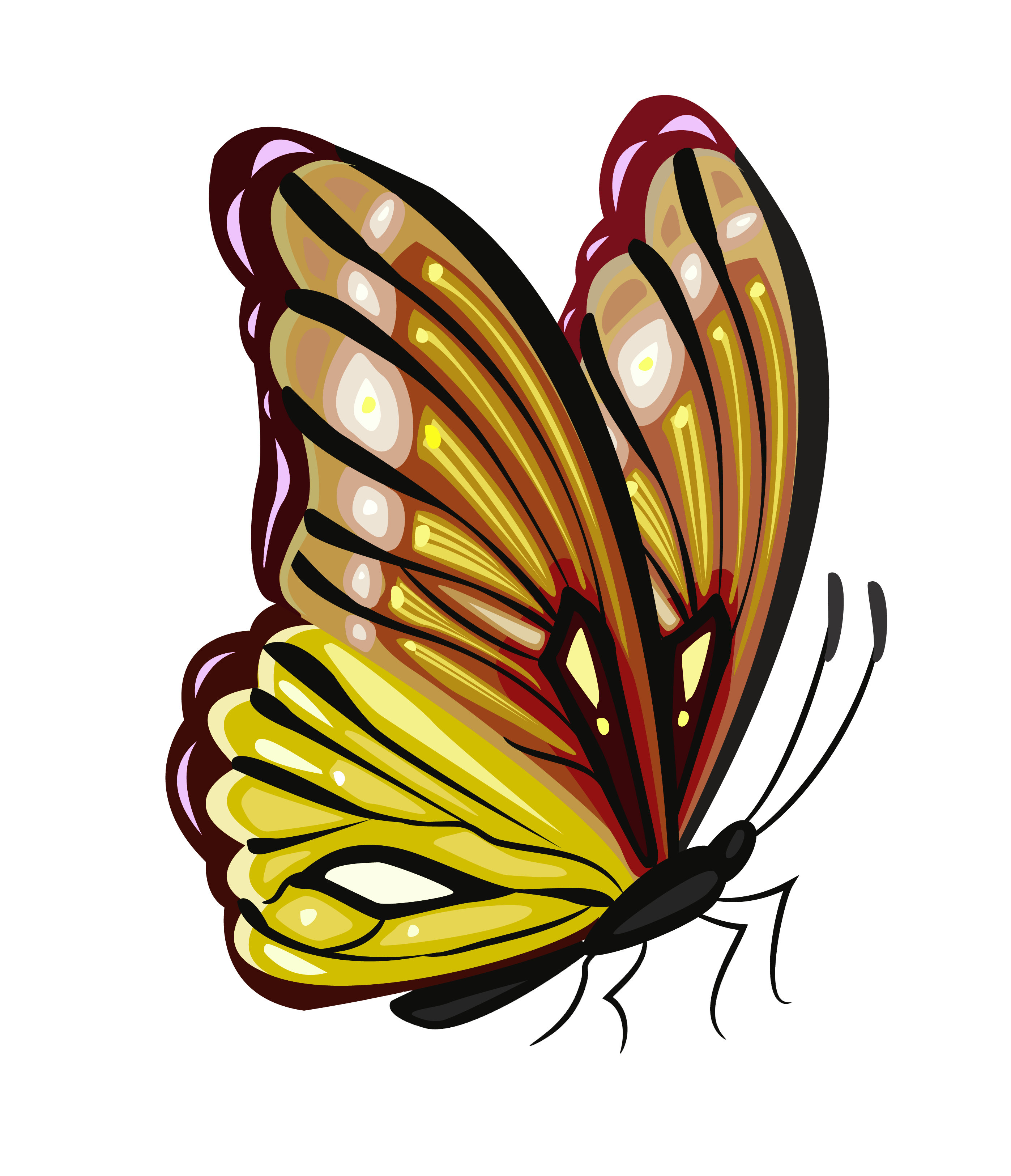 Yellow butterfly png. And brown clipart picture