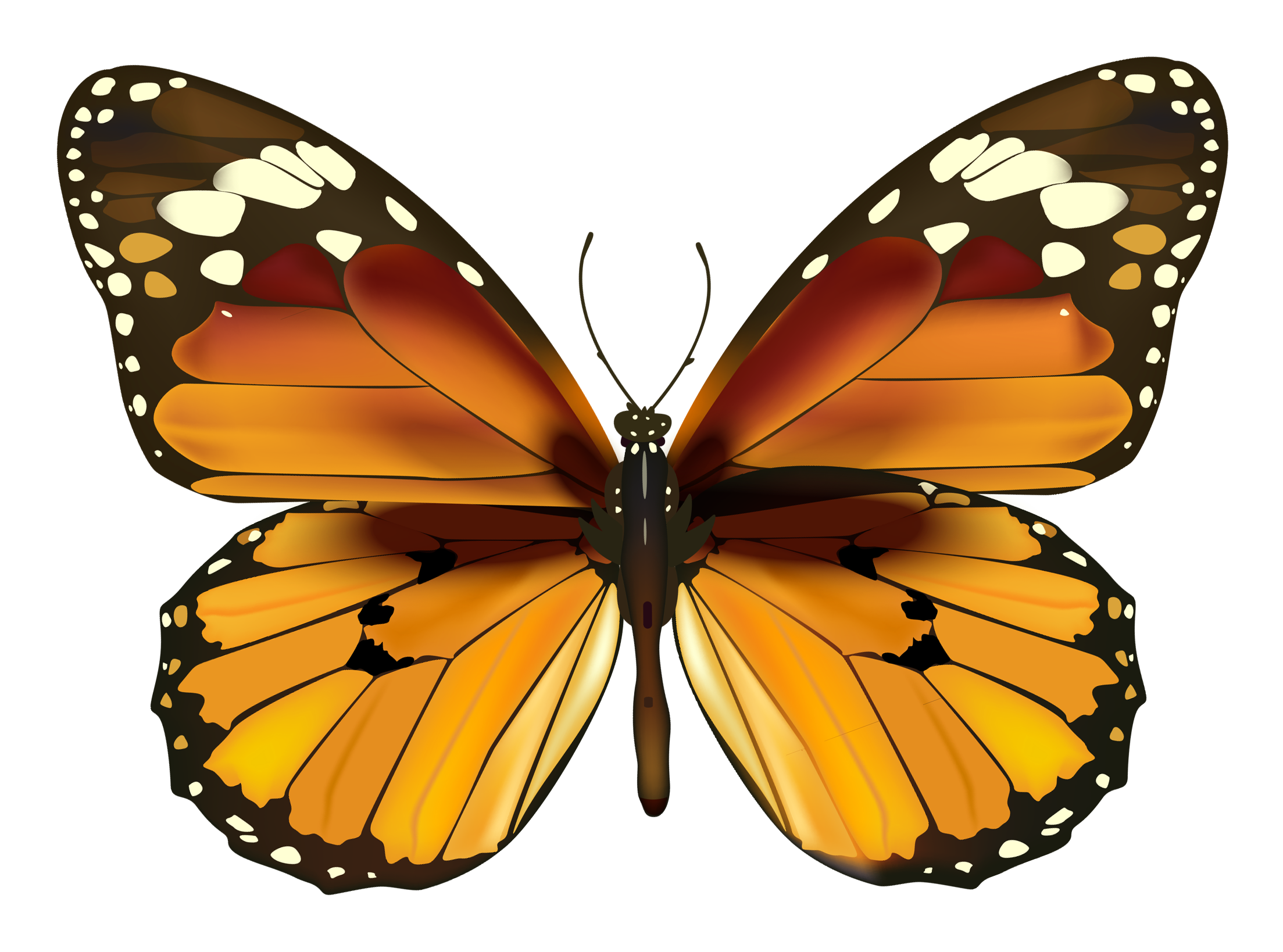 Yellow butterfly png. Clipart gallery yopriceville high