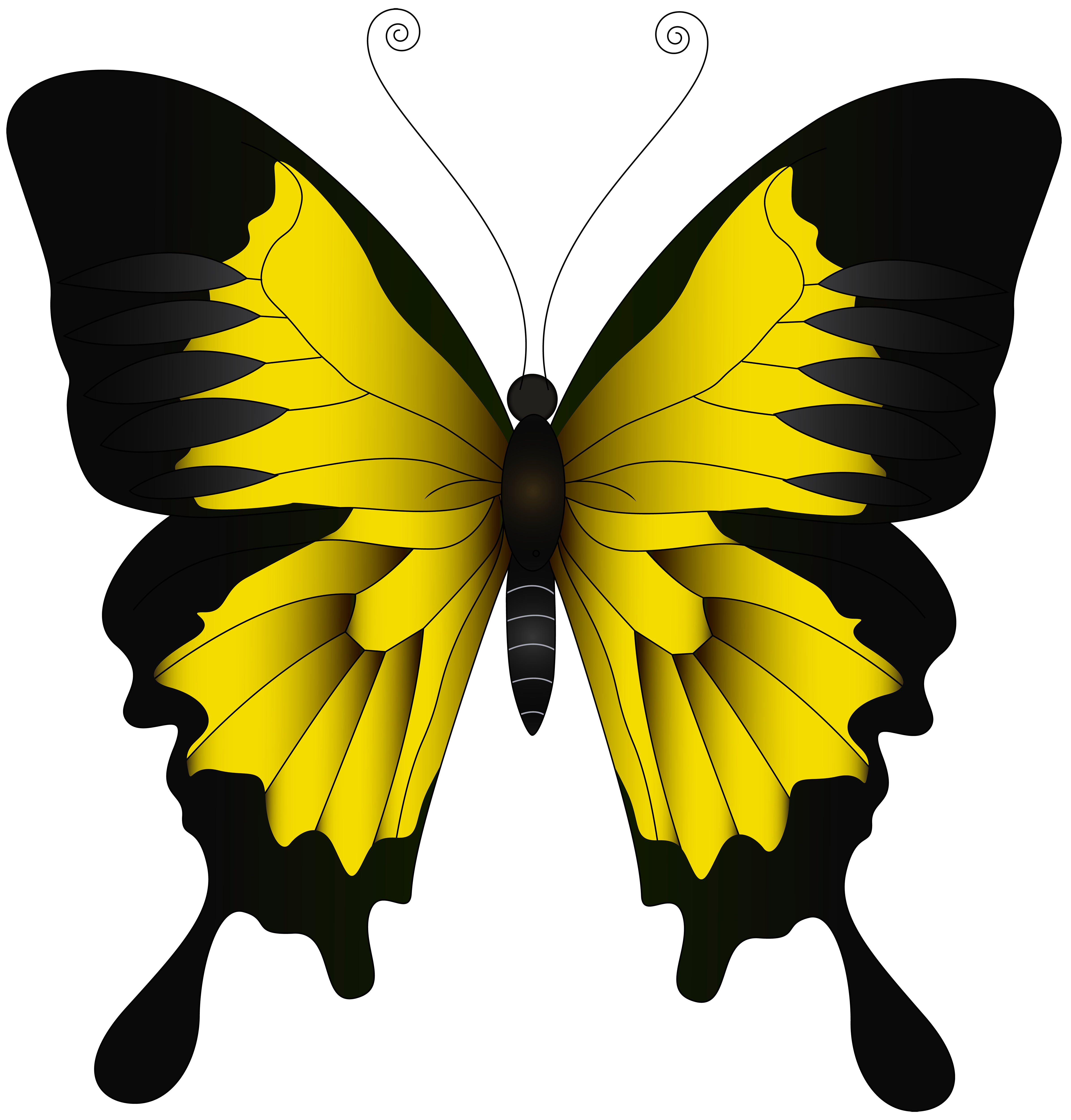 Yellow butterfly png. Clip art image gallery