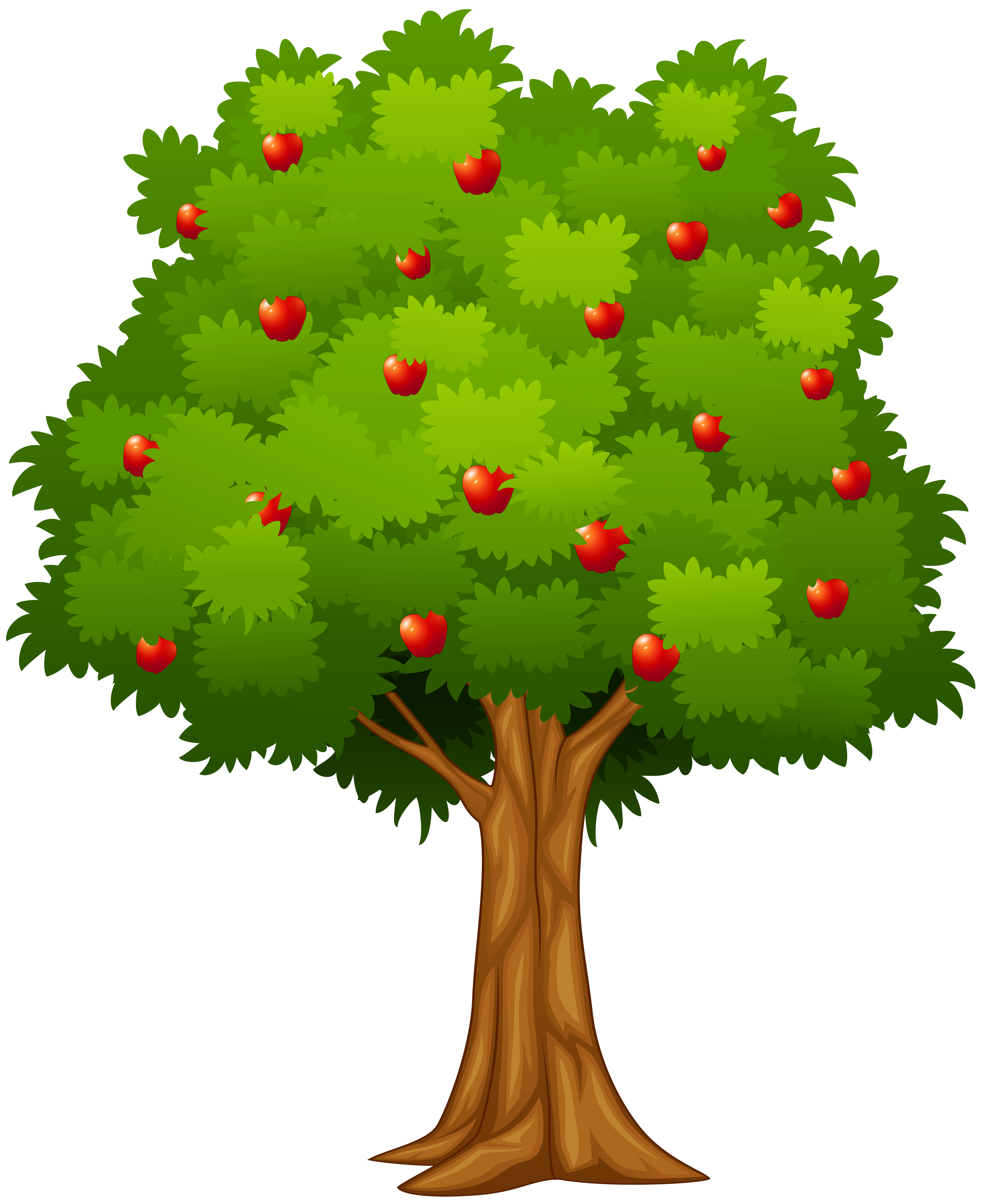 Apple tree png. Clip art image gallery
