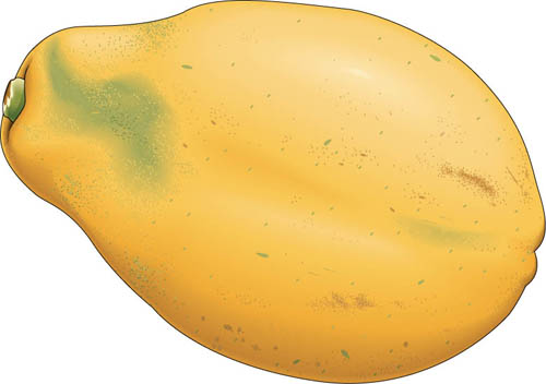 Yellow clipart papaya. Pencil and in color