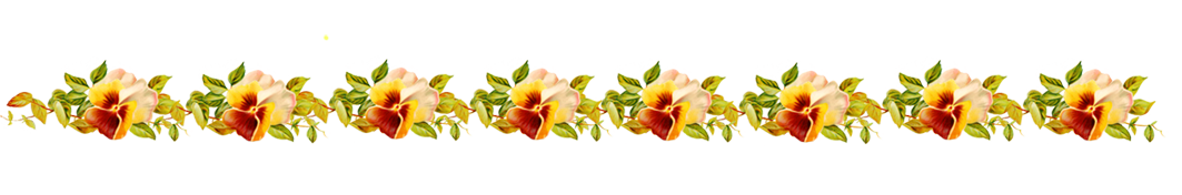 Flower line png. Borders and frames border