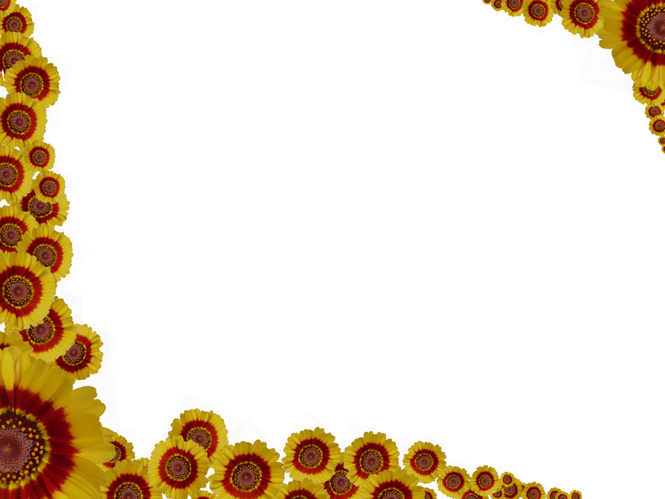Yellow flower border png. Red flowers sprinkled at