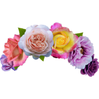 Yellow flower crown png. High quality crowns