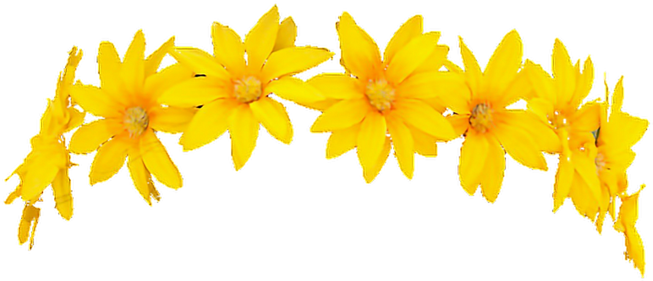 Yellow flower crown png. Download hd snapchat filter