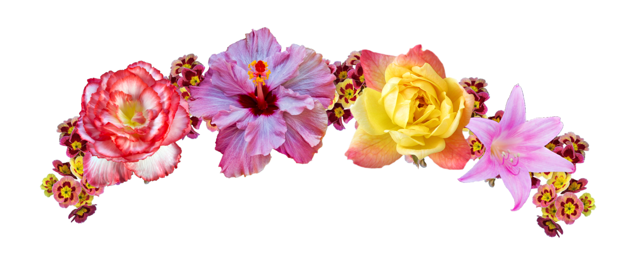 Pink and yellow png. Sticker transparent flower crown vector freeuse