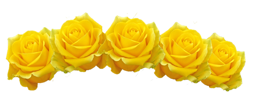 Yellow flower crown png. Other dresses dressesss