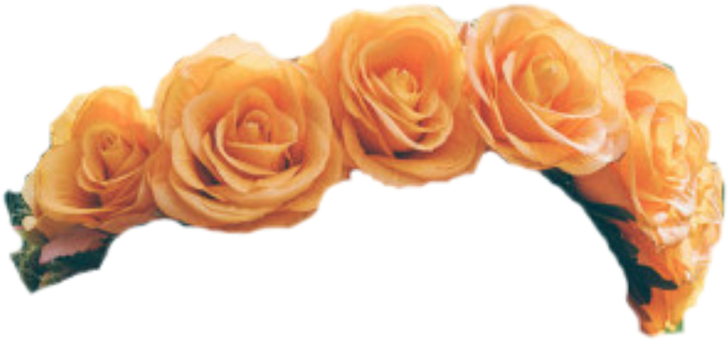 Yellow flower crown png. Flowercrown orange sticker by