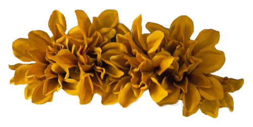Yellow flower crown png. Image tumblr static animal