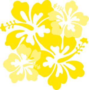 Yellow Hibiscus Png Picture 689610 Yellow Hibiscus Png