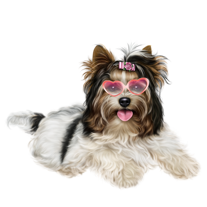 Biewer resultaat x kb. Yorkie clipart clip royalty free download