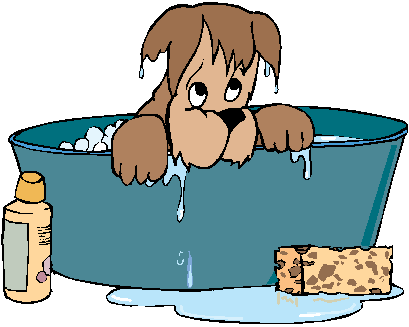 Yorkie clipart bath. Little dog grooming denver