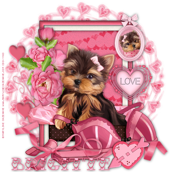 Yorkie clipart birthday. Happy yorkshire terrier card