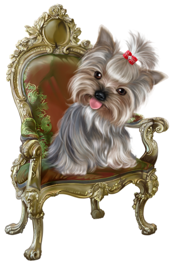 Yorkie clipart birthday. Chiens dog puppies wallpapers