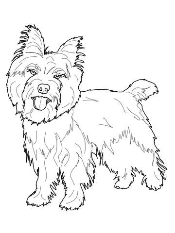 Yorkie clipart cairn terrier. Coloring page free printable