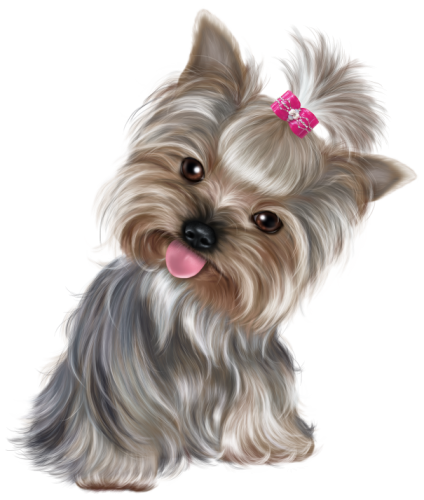 Yorkie clipart teacup yorkie. Pin by julienne bernstein