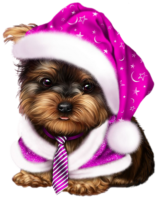 Pin by carmen gutierrez. Yorkie clipart teacup yorkie graphic stock