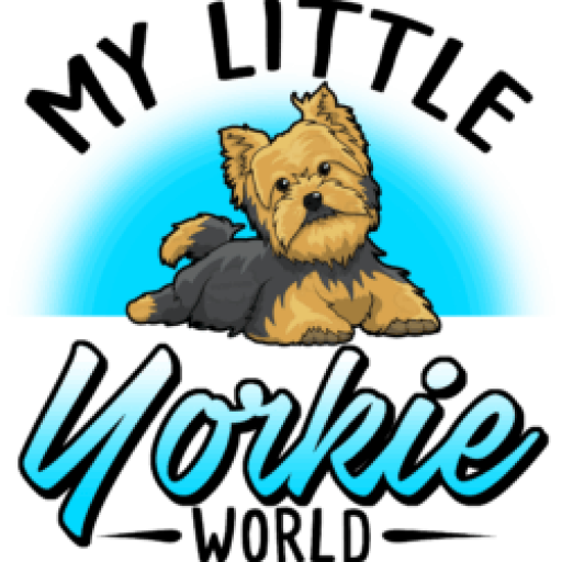 Yorkie clipart teacup yorkie. Does your hate snow