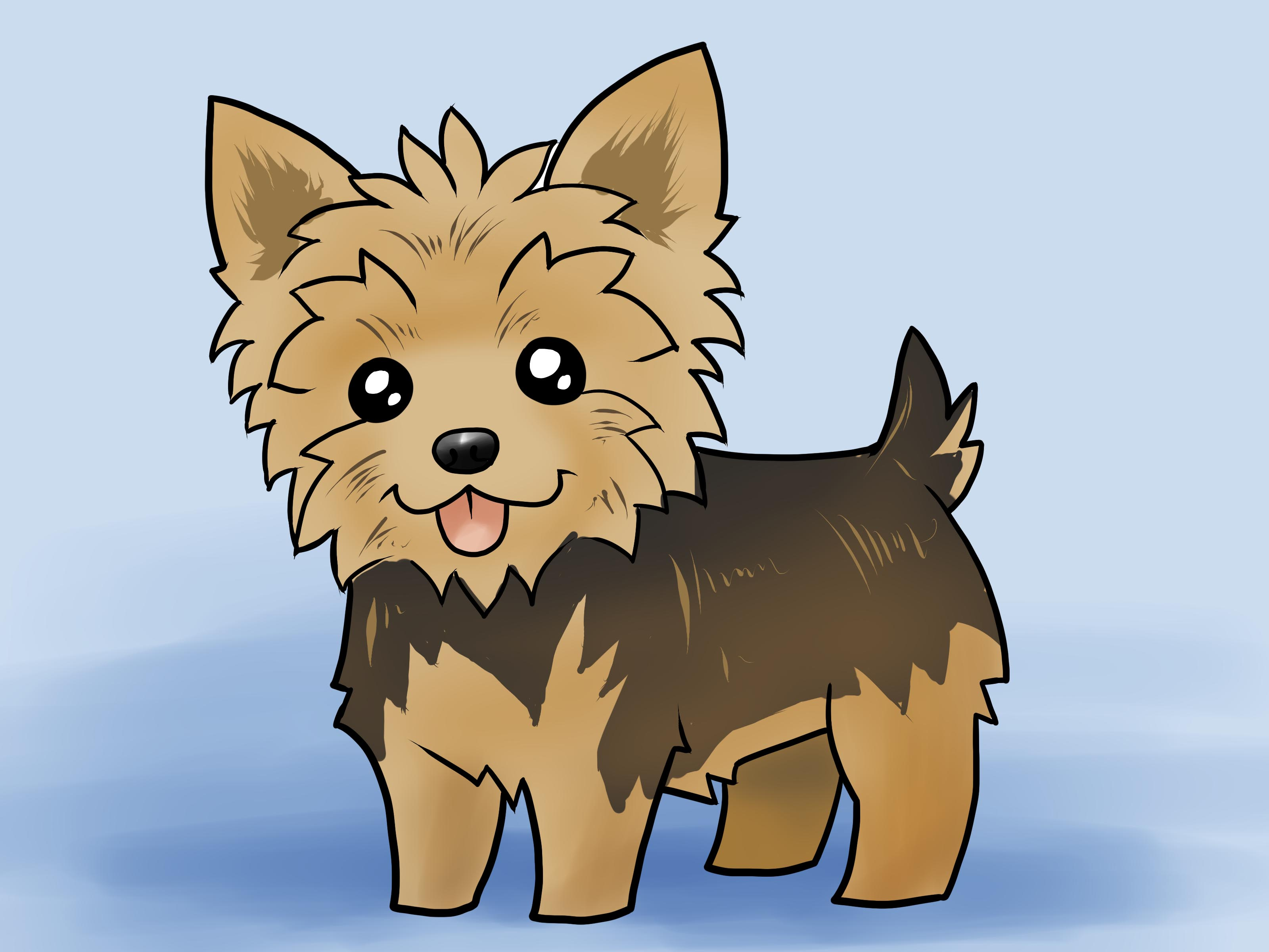Yorkie clipart teacup yorkie. How to draw a