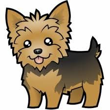 yorkie clipart