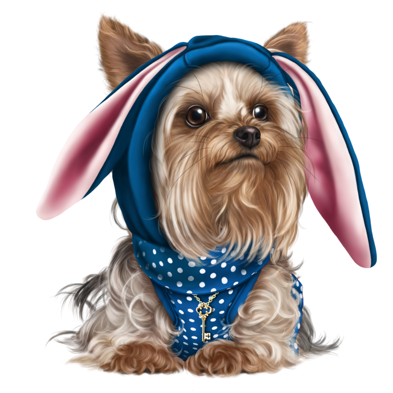 Yorkie svg cairn terrier. Cliparts for free