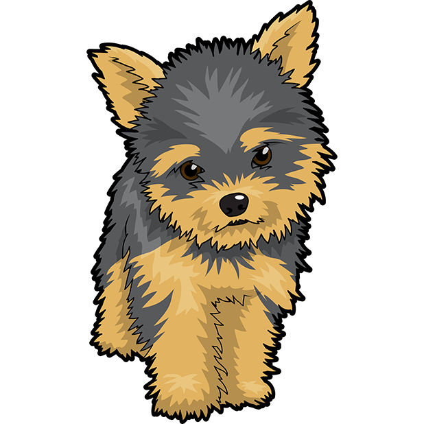 Yorkie svg clip art. Jpg royalty free