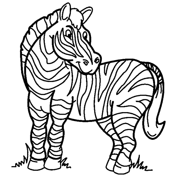 Zebra clipart coloring page. Pages panda free images