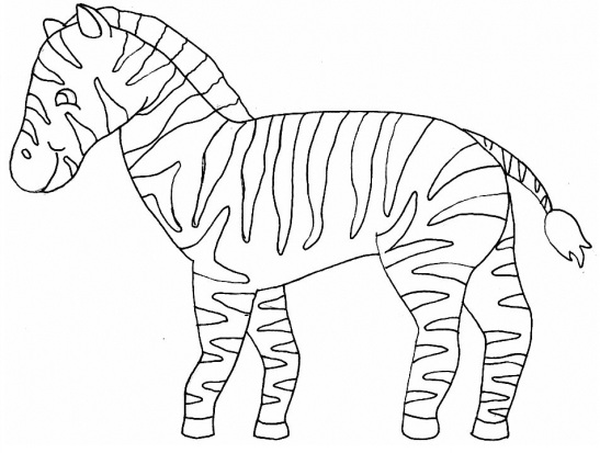 Zebra clipart coloring page. Unconditional pictures to print