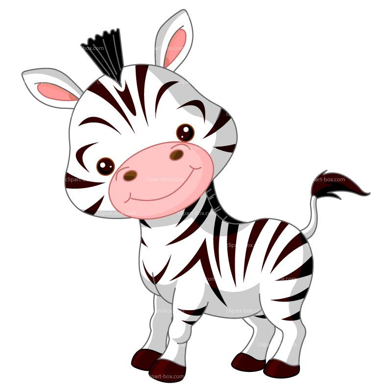 Zebra clipart coloring page. Baby pictures for kids