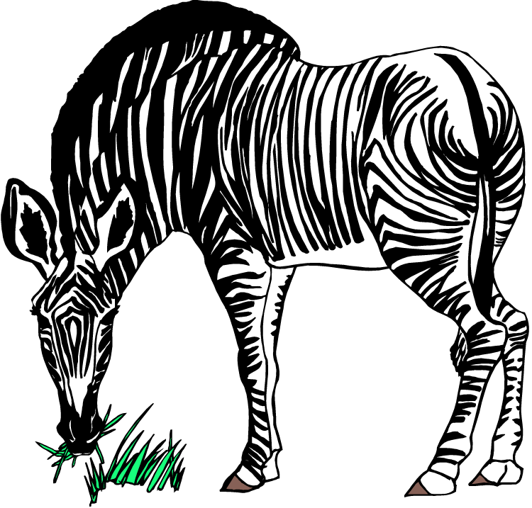 Zebra clipart wild animal. Free