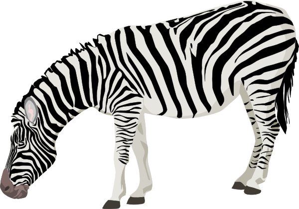 Zebra vector png. Clip art at clker