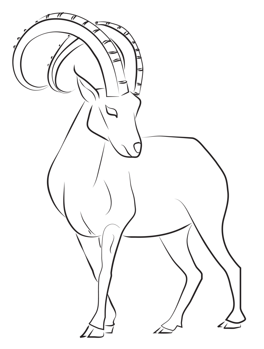 Zodiac drawing easy. Ibex lines by astralseed