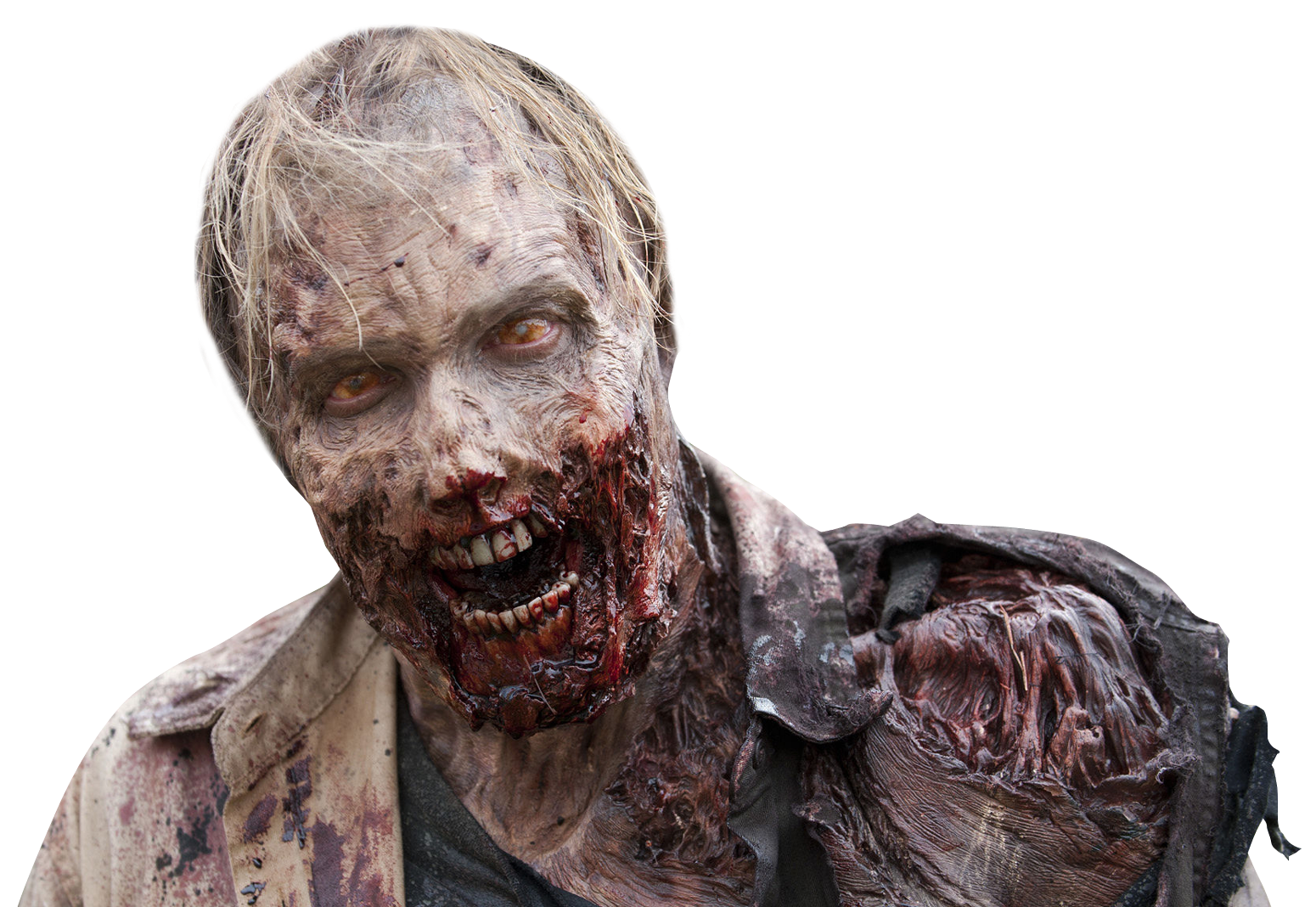 Zombie effect png. Face crop task and