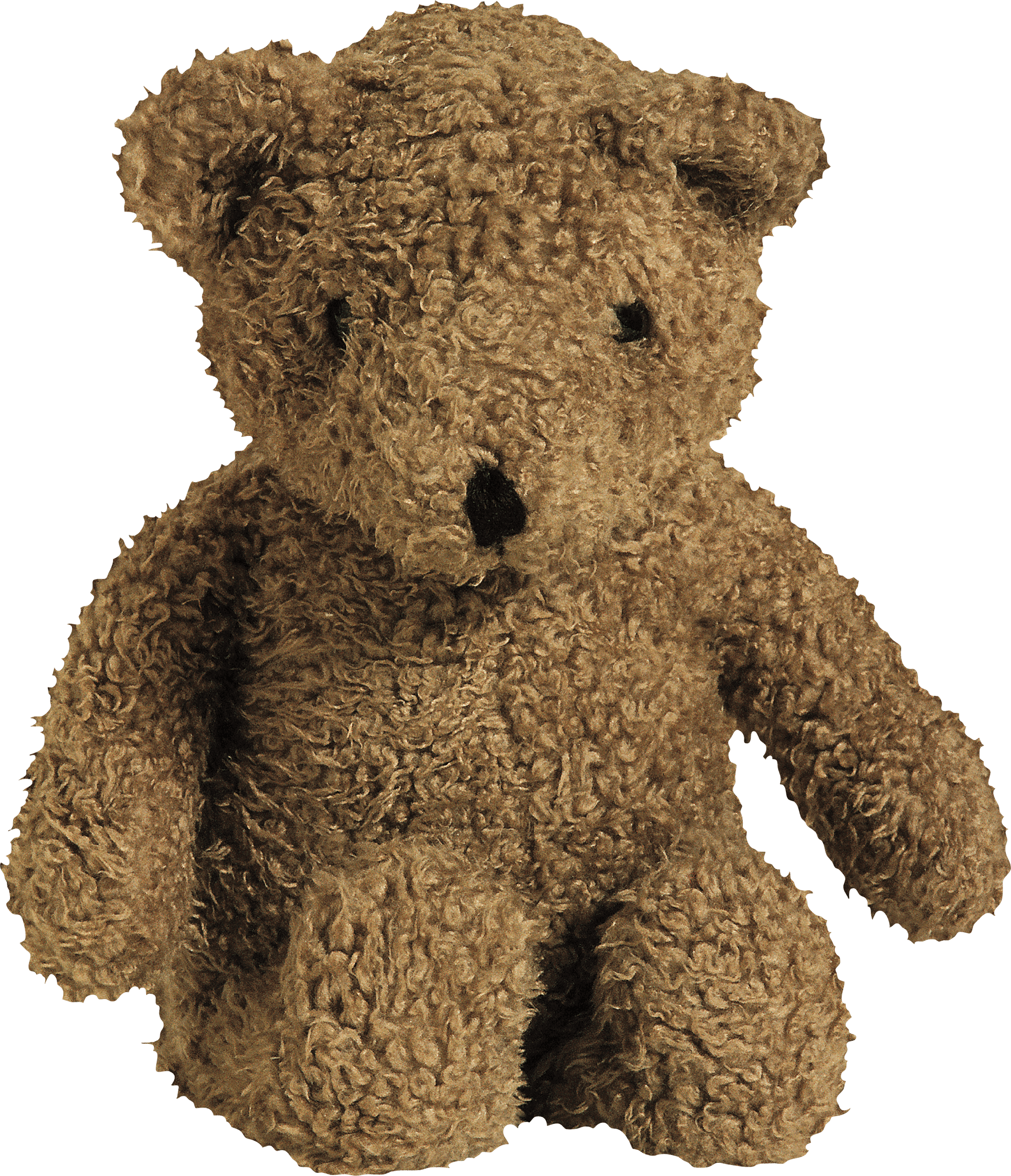 Zombies teddy bear png. Download toy image hq