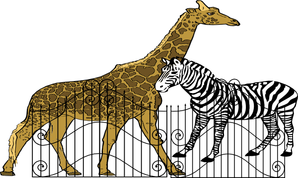 Zoo cage png. Picture arts