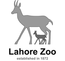 Zoo clipart english school. Lahore wikipedia logopng