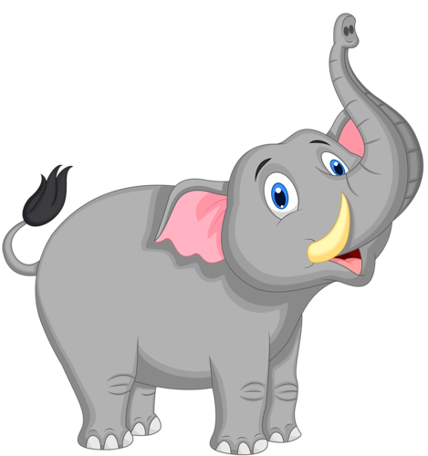 Zoo vector cartoon elephant. Png