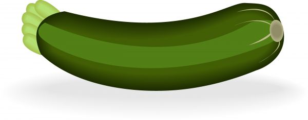 Zucchini clipart. Illustrated image of stock